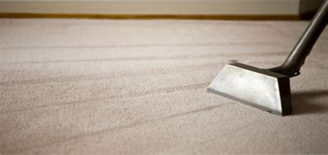 Services So Nice Again Carpet Cleaning Outer Banks Rug Cleaning