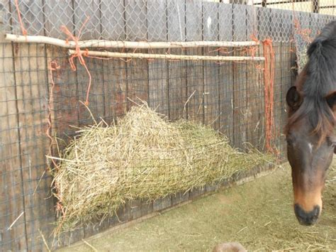 How To Make A Hay Rack For Horses by Feeders Hay Car Interior Design