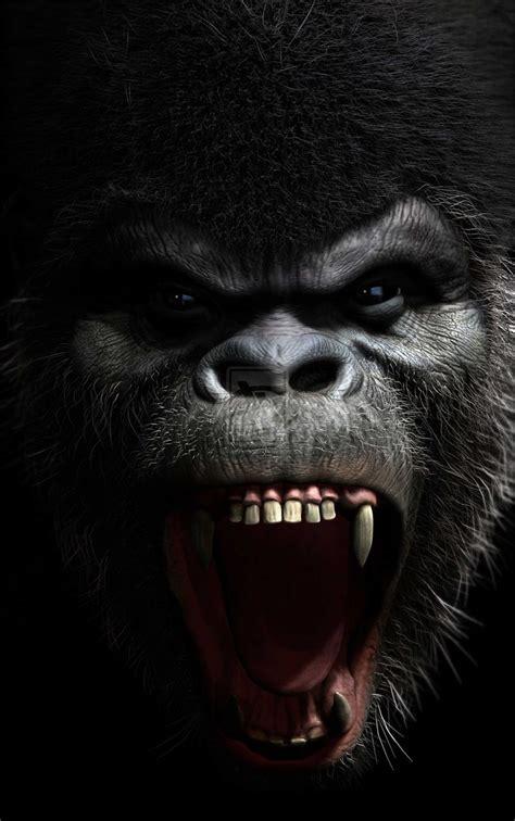 silverback tattoo angry silverback gorilla drawing roaring gorilla viewing