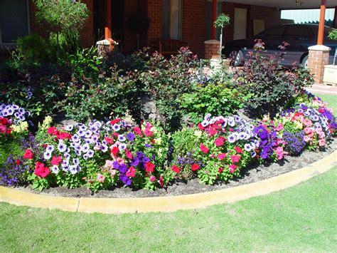 picture flower garden home grass
