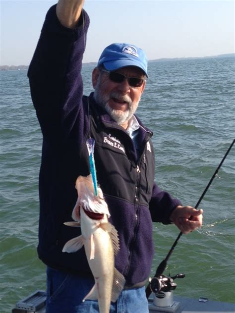 erie pa charter boat association lake erie fishing report monroe michigan stray cat autos