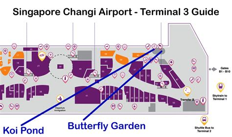 singapore changi airport butterfly garden map terminal