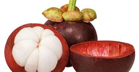 Minyak Zaitun Berapa Nya manfaat kulit buah manggis yang ajib is