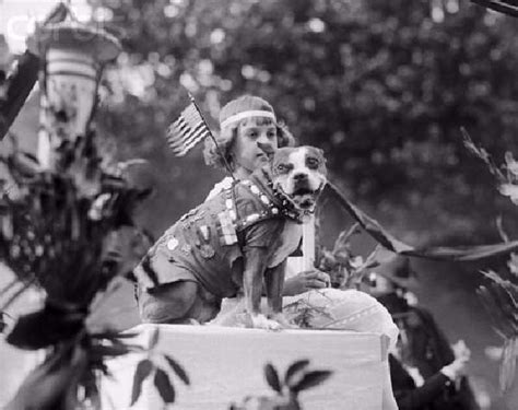 Sgt Stubby Medals Sergeant Stubby Askmarion