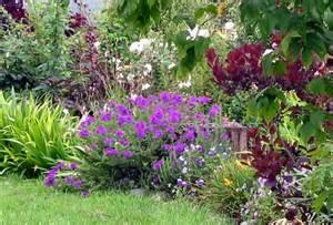 Planting A Perennial Flower Garden Perennial Plants