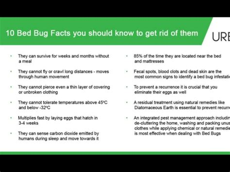 how to get rid of flea bed bugs naturally