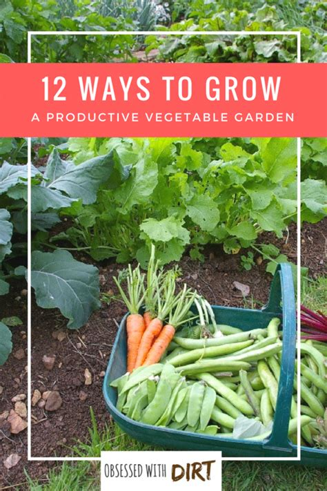 Best Way To Water A Vegetable Garden 12 Ways To Grow A Successful Vegetable Garden Inc Best
