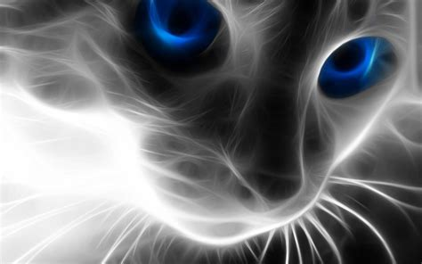 imagenes virtuales en hd 50 fondos de pantalla con mascotas para whatsapp del 29 de