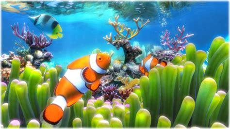 wallpaper animasi water clownfish aquarium live wallpaper download