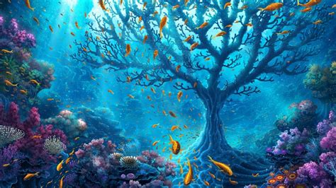 reef wallpaper nature hd desktop wallpapers 4k hd underwater world hd nature 4k wallpapers images