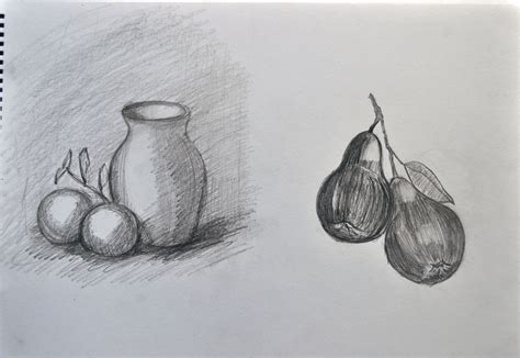 Sketch Of A Vase by Sketch Vase Fig Fruit By Gullwingxtreme On Deviantart