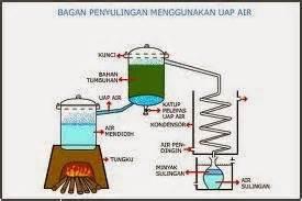 Minyak Atsiri Per Liter budidaya tumbuh hijau dan lestari apa itu minyak atsiri