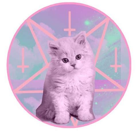 kitty kat themes pinterest the world s catalog of ideas