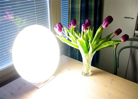 seasonal affective disorder light therapy seasonal affective disorder bright light therapy