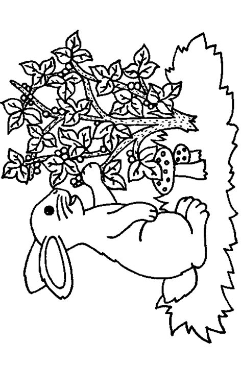 printable coloring pages fall theme free coloring pages of autumn theme