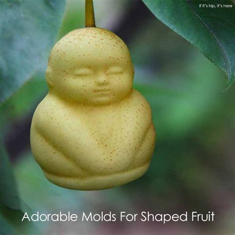 fruit molds grow your own shaped fruit with these