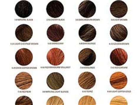 professional hair color brands blog archives xtrarutracker