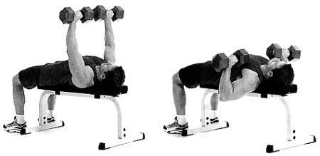 flat bench dumbbell press ท า flat bench dumbbell press ร จ กท าเล นเวท