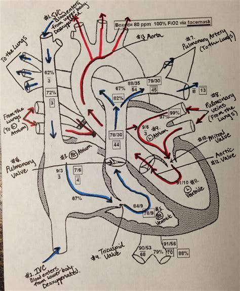warden procedure diagram hospitalist studies 2013
