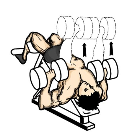 dumbbell decline bench press chest