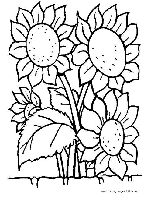 free garden flowers coloring pages
