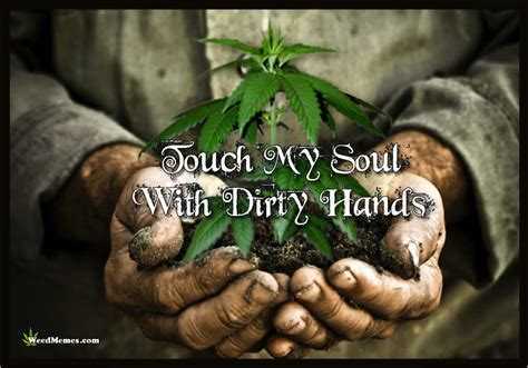 Best Weed Memes - touch my soul with dirty hands grow weed memes