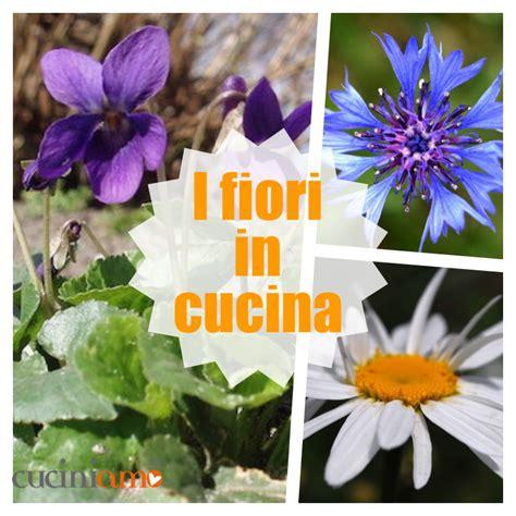 fiori in cucina fiori in cucina quali fiori si possono mangiare cuciniamo