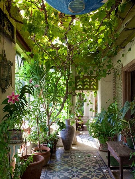 With An E Indoor Garden A More Boutiful Home Garden Feng Shui Plants The Tao Of