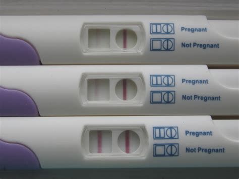 test negativo beta positive problems in early pregnancy emcage