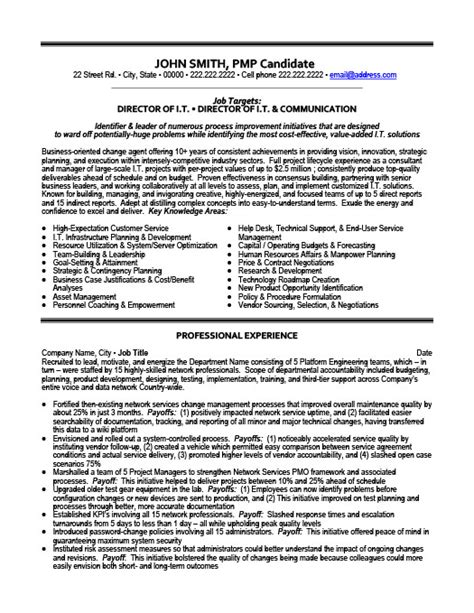 Resume Vice President It Vice President Of Finance Resume Template Premium Resume Sles Exle