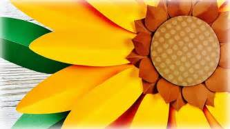 como hacer un girasol gigante de papel 61 best flores gigantes en papel giants paper flowers
