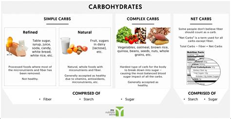 6 types of carbohydrates ketogenic diet overview a beginners guide my nutrition