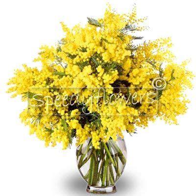 spedire fiori in russia 8 marzo festa della donna spedire mazzo mimosa