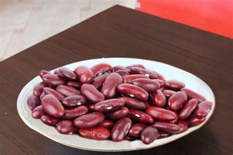 manfaat  khasiat kacang merah  jantung