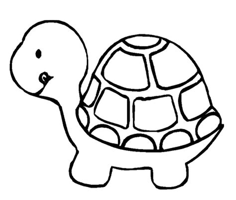 turtle coloring page turtle coloring page only coloring pages