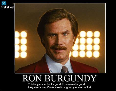 Ron Meme - yammer meme ron burgundy 2 by fidgetawesomesauce on