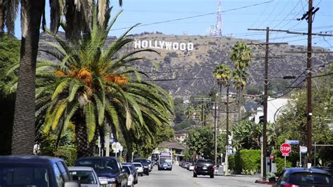 hollywood sign from street hollywood palm trees wallpaper www imgkid the