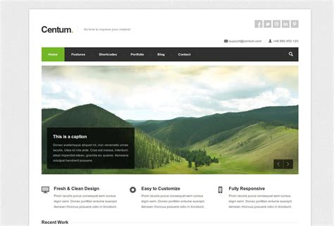20 best wordpress themes pro oktober 2012