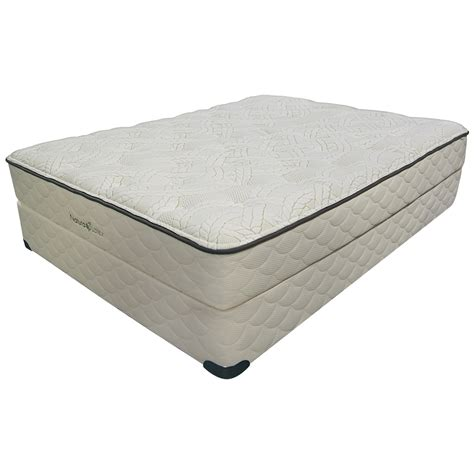 latex beds replacing a sealy springfree laguna beach latex mattress