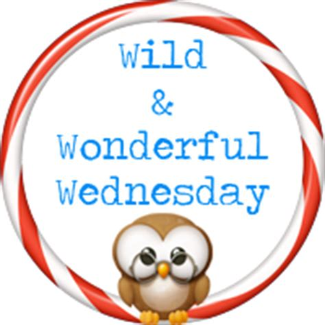 geo librarian: wild & wonderful wednesday: chicago abc/san