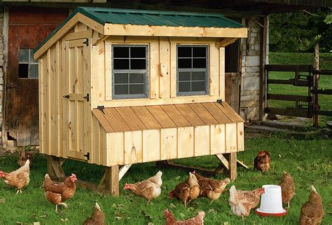 the chicken house quaker chicken coop chicken houses for sale horizon