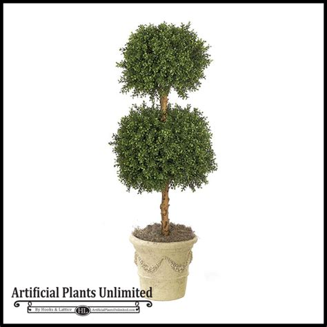 4 boxwood ball topiary indoor