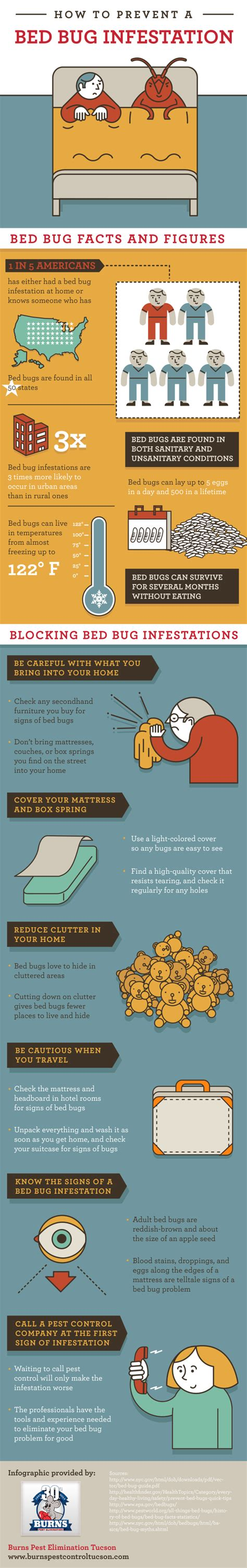 how to prevent bed bugs how to prevent a bed bug infestation infographic