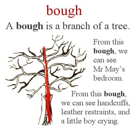 my first dictionary: today's word is bough