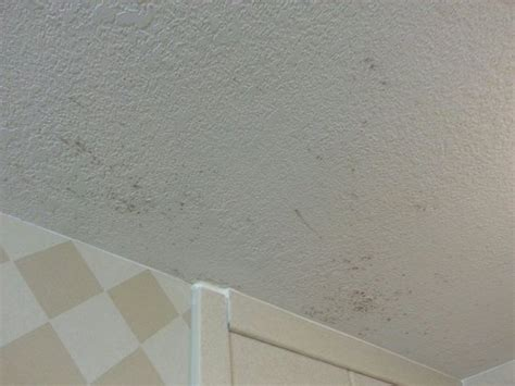 black mould on ceilings in bedrooms black mold on the ceiling health safety inspection is