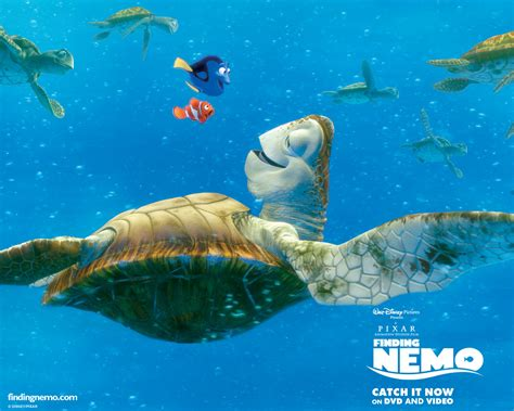 Finding Similarities Between Options And by Finding Nemo Wallpaper Number 2 1280 X 1024 Pixels
