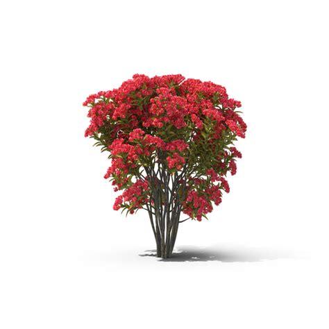 flowering tree png images psds   pixelsquid