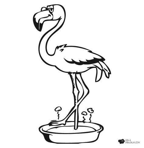 imagenes animales aereos para colorear precioso flamenco dibujalia dibujos para colorear