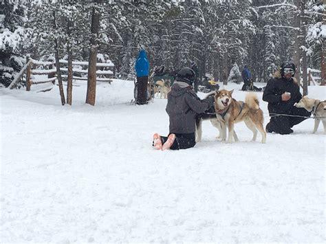 sledding breckenridge sledding and snowmobiling in breckenridge pitstops for