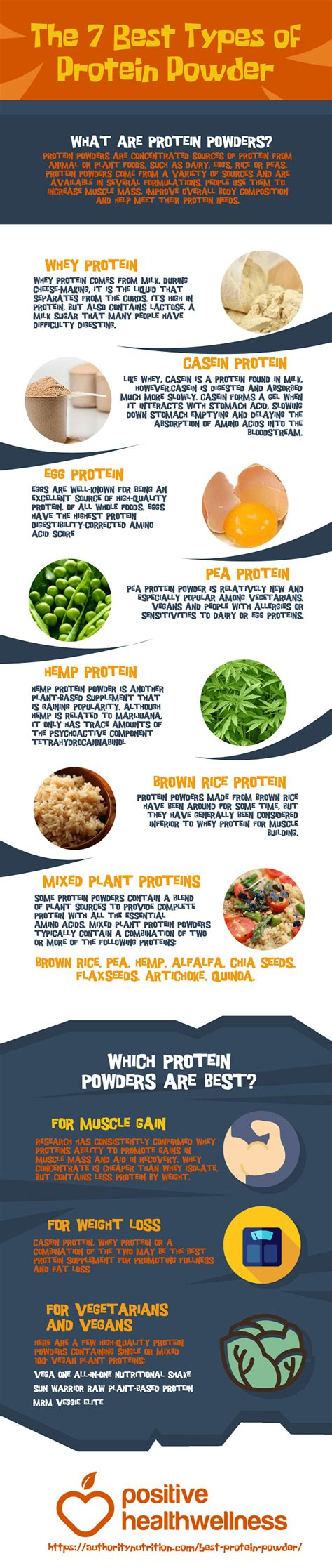 7 protein powder the 7 best types of protein powder infographic